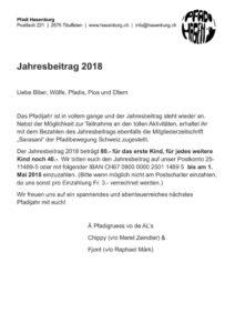 thumbnail of Jahresbeitrag 2018