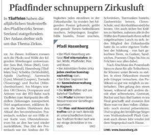 thumbnail of 2012_Wolfsstufentreffen_BielerTagblatt